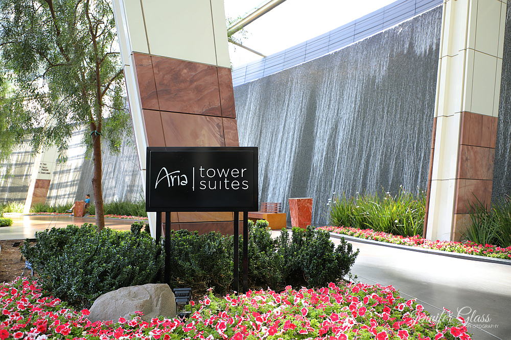 Aria Tower Suites Entrance and waterfall Photo